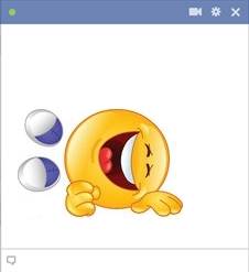 ROFL smiley - facebook chat emoticon code
